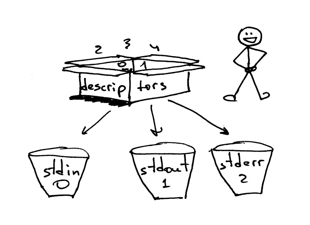 标准输入的文件描述符