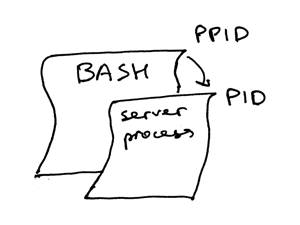 bash how to run multiple python terminal
